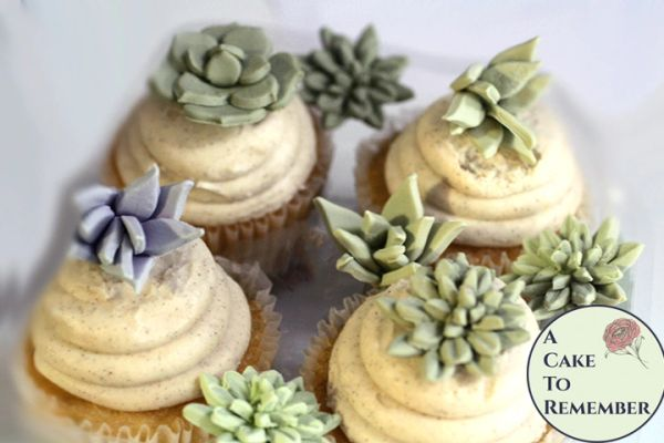 12 small edible succulents assorted cupcake toppers