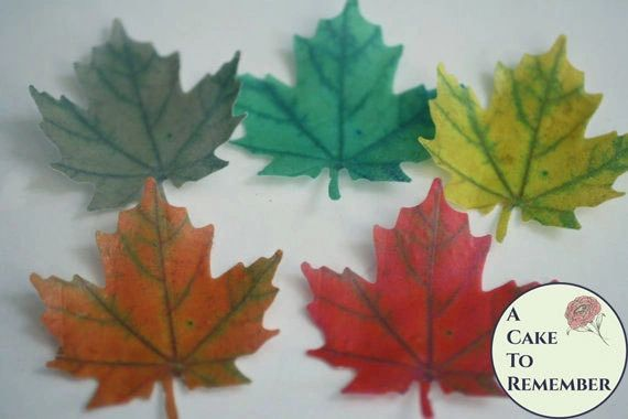 12 Wafer paper edible maple leaves