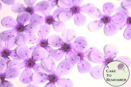 48 wafer paper purple cherry blossoms for cupcake toppers