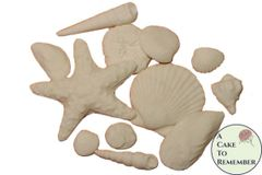 White Sugar Seashells- Variety for cake decorating and wedding cakes. Gumpaste edible seashells