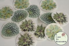 12 wafer paper succulent images for cupcake toppers