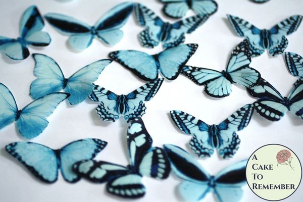 20 blue edible butterflies for cupcake toppers