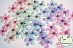 48 wafer paper pastel rainbow cherry blossoms for cupcake toppers