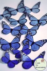 12 Blue edible butterflies cupcake toppers, monarchs