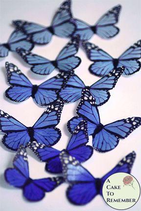 12 Blue edible butterflies cupcake toppers, monarchs