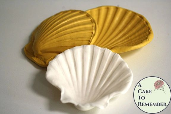 4 Quot Clam Shell Silicone Mold 3d Clam Press For Cakes And