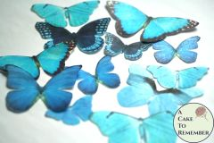 12 large teal blue wafer paper edible butterflies for cupcakes