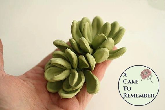 "Three 2 1/2"" wired gumpaste succulents with longer petals for cake decorating, wedding cake toppers, or DIY wedding cakes"
