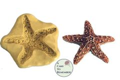 """2"""" Silicone starfish mold to make for fondant and cake decorating"""