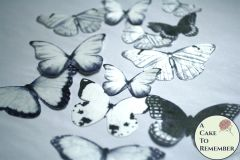 12 large black and white wafer paper edible butterfly cupcake toppers