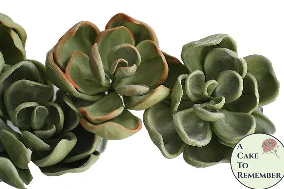 "Three 3"" wired gumpaste succulents with rounded tips for cake decorating, wedding cake toppers, or DIY wedding cakes"