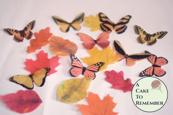 18 fall colors edible butterflies and edible flowers for cupcake toppers