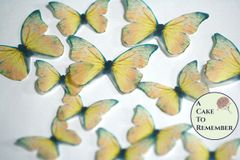 12 yellow wafer paper edible butterflies for wedding cake toppers.