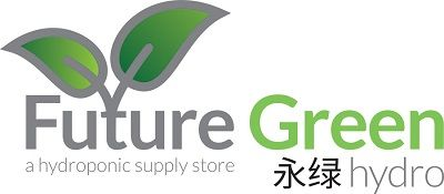 FUTURE GREEN HYDRO INC