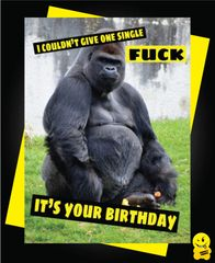 I couldn't give one single fuck it's your birthday C334