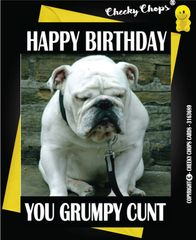 Happy Birthday You Grumpy Cunt - C39p