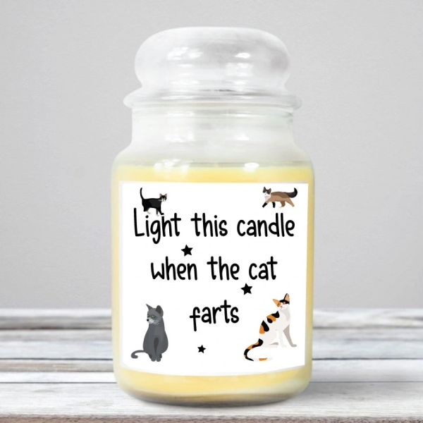 Light this candle when the cat farts- Wanky Candle