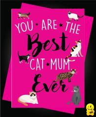 Cat Mum M3