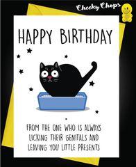 Birthday Card - Cat Little Present C438
