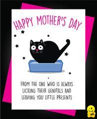 Little presents cat M9
