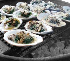 Half Sack (6 Count) Ceramic Oyster Shells
