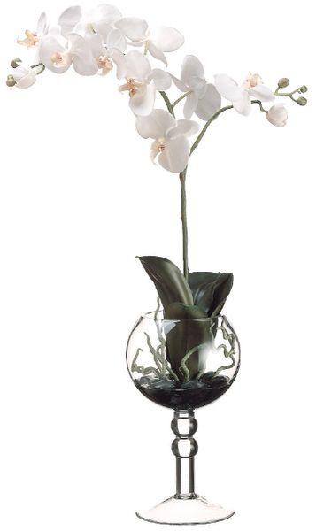 Phalaenopsis Orchid In Glass Vase All Silks Etc