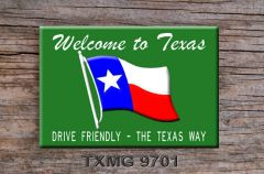 Texas Fridge Magnet with graphics of Texas state line sign