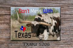 Don't Mess with Texas Fridge Magnet