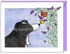 Thinking of You - Zip and Butterfly Greeting Card
