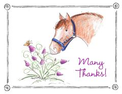 Thank You - Horse and Butterfly Boxed Note Cards