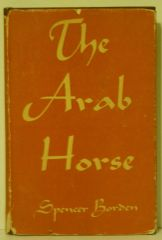 The Arab Horse by Spencer Borden