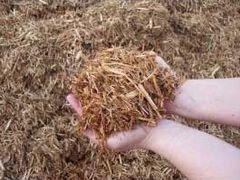 Bagged Cedar Mulch