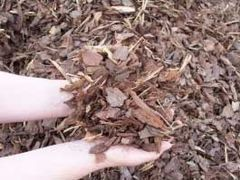 Bagged Pine Bark Nuggets