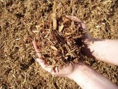 Bagged Cypress Blend Mulch