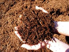 Bagged Brown Hardwood Mulch