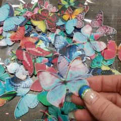 WAFER BUTTERFLIES