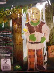 Shrek Forever after sm