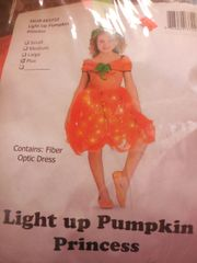 Light Up Pumpkin Princess