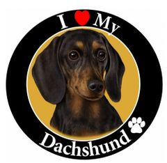 Doxie Car Magnet II