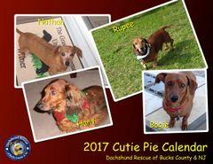 2017 DRBC Calendar