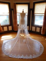 Two Tier Cathedral Bridal Veil with Lace Applique Edge T001