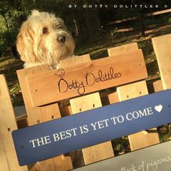 'The Best is Yet to Come' Wooden Sign
