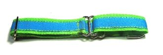 Adjustable Martingale Collar - Blue and Green - Large