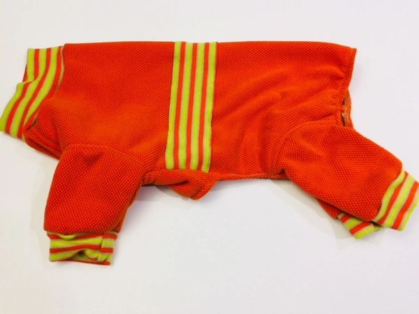 Orange Track Suit Sweatshirt Pet Jammies - Roomy Assorted Sizes