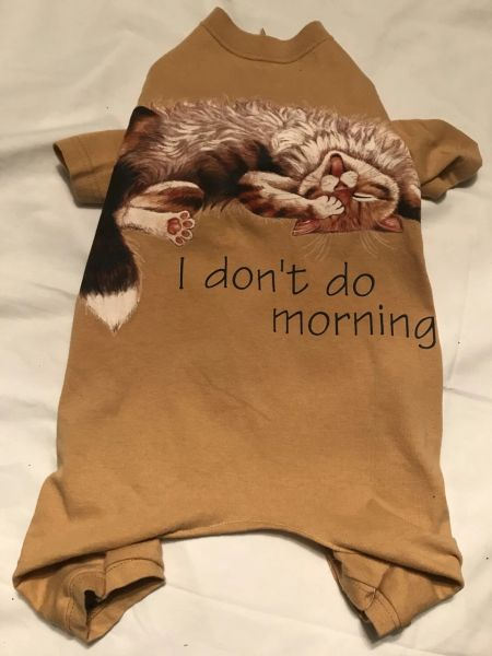 Don't Do Mornings Jammies - Standard Large