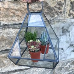 Glass Lead Terrarium 19 x 19 x 23cm