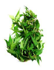 MYS Laksa Leaf 50G