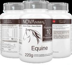Probiotics Equine or Dogs 220g size bottle 10 Billion