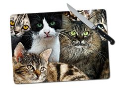 Cats Kittens Large Tempered Glass Cutting Board