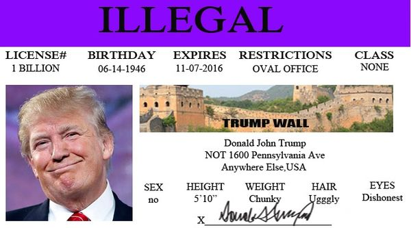 Case Borde Drivers Politicallypunny You Donald The In Stopped com License Trump At Get